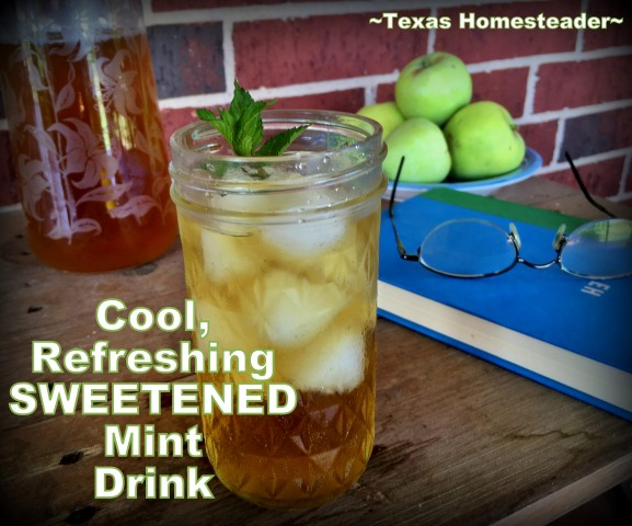 I've got chocolate mint growing outside & a gorgeous Stevia plant too. Why not brew it into a refreshingly cold, sweetened minty beverage? #TexasHomesteader