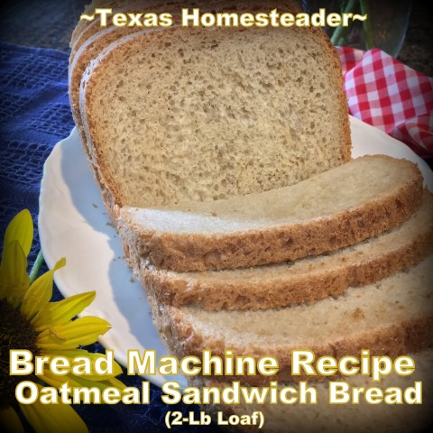 Bread Machine recipe for a delicious 2-lb loaf of homemade oatmeal bread. Use your bread machine to simplify bread-baking day! #TexasHomesteader