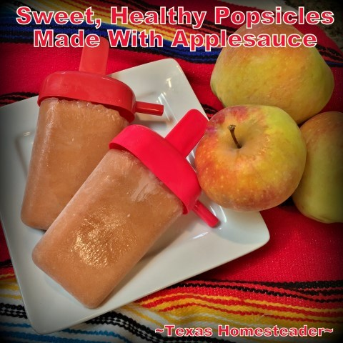 Homemade applesauce is used in many different ways in our household. But today I'm making it into a frozen sweet treat - apple sticks! #TexasHomesteader