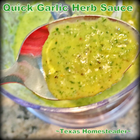 Fresh Garlic Herb Sauce for the light taste of summer. Whips up in minutes and is great on chicken, pasta, even as a salad dressing! #TexasHomesteader