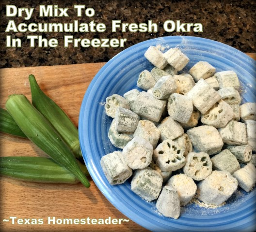 An easy way to accumulate fresh okra from the garden & prepare it for frying at a later time. A quick mixture of flour, cornmeal & spices. #TexasHomesteader