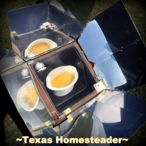 Scrambled eggs cooked in solar oven. Frugality can be eco friendly too. Decluttering, coupons, gifting, etc. Come see 5 frugal things we did to save money this week #TexasHomesteader