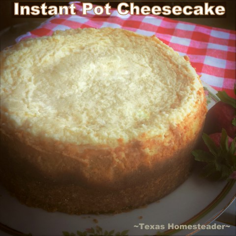 Making Instant Pot Cheesecake turns a finicky dessert into pure simplicity. Come see this easy cheesecake recipe cooked in an Instant Pot. #TexasHomesteader
