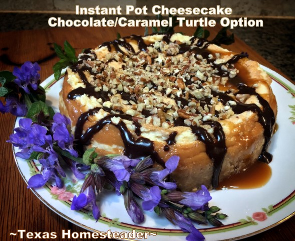 Chocolate drizzle dresses up plain cheesecake. And it mixes together in minutes. #TexasHomesteader
