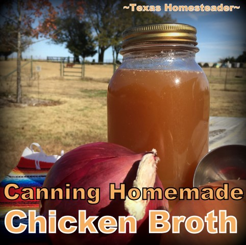 Preserve your homemade broth. Use a pressure canner when canning broth. It's easy and your reward is jars of homemade broth for months #TexasHomesteader
