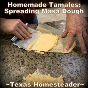 Spreading masa dough. It's time consuming to make homemade tamales. But it's very easy. Come see my step-by-step directions complete with photos and recipe. #TexasHomesteader