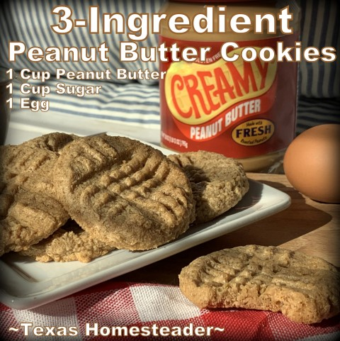 Recipe 3 Ingredient Peanut Butter Cookies Texas Homesteader