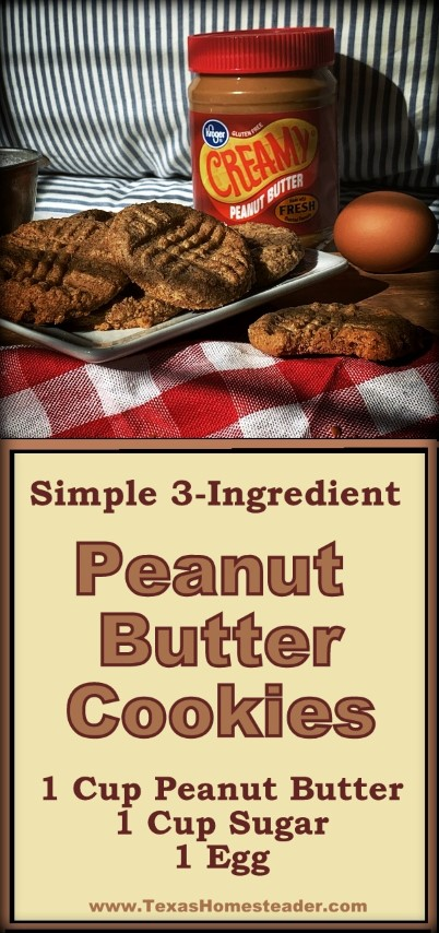 A peanut butter cookie recipe using only 3 ingredients: 1 egg, 1 cup peanut butter & 1 cup sugar. Homemade peanut butter cookies FAST! #TexasHomesteader