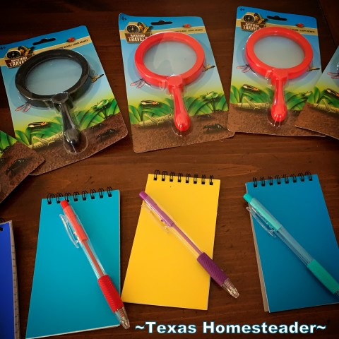 Experience gift props for Escape Room - spy glasses, notebook, pens in fun colors. #TexasHomesteader