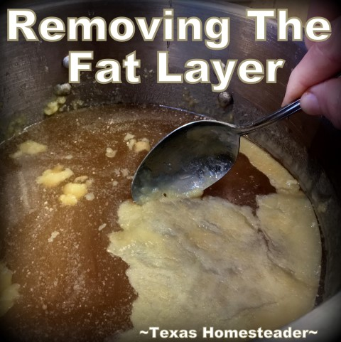 Skimming the fat away from my homemade broth. Instant Pot Broth is crazy-easy to make, y'all. Literally push-button convenience. Come see how I make and preserve it. #TexasHomesteader