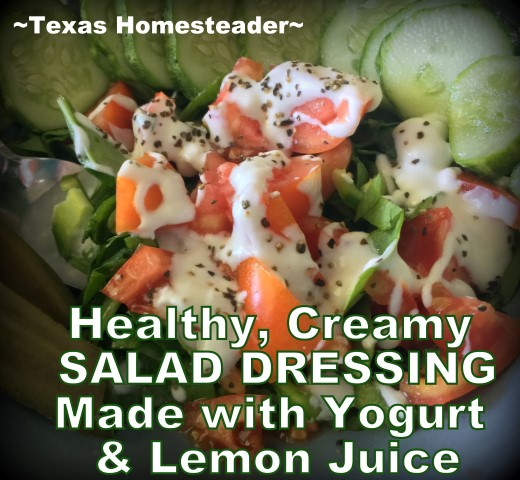 I wanted a creamy salad dressing, but I wanted it to be healthy. And fresh. And CHEAP. This is the zero-waste recipe I came up with. #TexasHomesteader