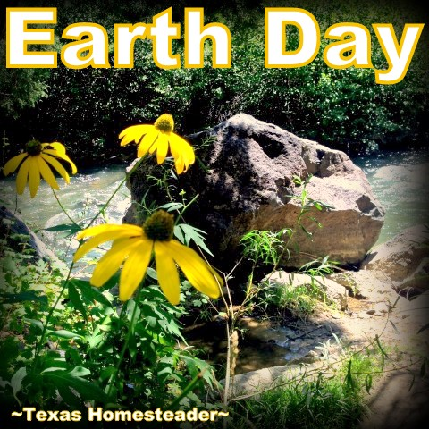 Happy Earth Day, y'all - it's like Mother Nature's Birthday. There are lots of gifts we can give to Mother Nature, come see my faves. #TexasHomesteader