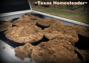 Sandy topsoil purchased in bulk without plastic for CHEAP! 5 Frugal Things I did this week to save money on my raised beds. This week I'm talking all about saving money on gardening. Come see! #TexasHomesteader