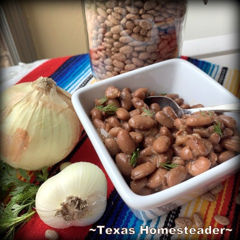 Large pot of cooked pinto beans served different ways. Serving homemade meals every day doesn't have to be hard or time consuming. There are lots of easy shortcuts. Come see! #TexasHomesteader