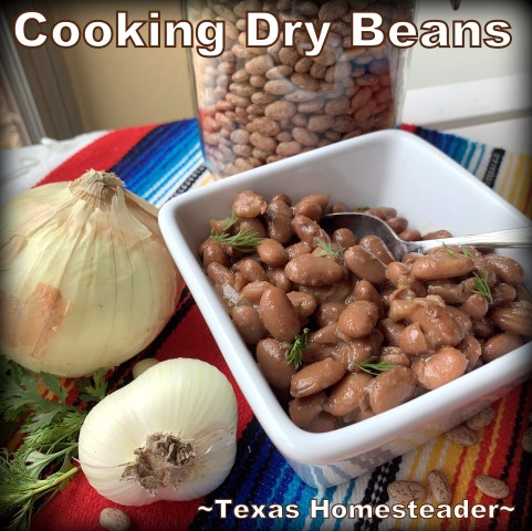 It's super easy to cook Instant Pot Pinto Beans. And I often cook a whole bag. You'd be surprised at the many ways to serve them. #TexasHomesteader