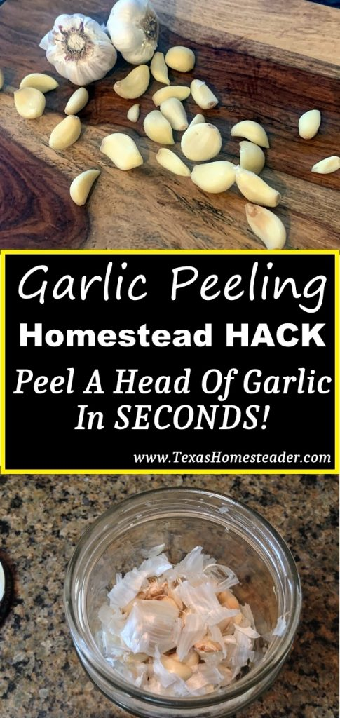 We love garlic, how about you? I have a shortcut to peel garlic too. I can peel a whole head of garlic cloves in seconds. Come see how! #TexasHomesteader