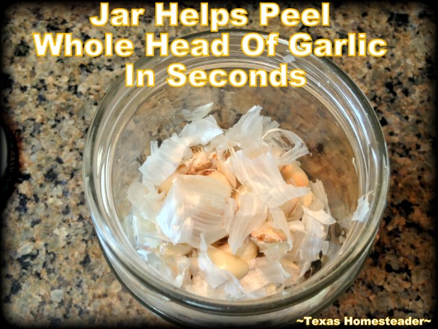 Garlic cloves peeled using glass jar. We love garlic, how about you? I have a shortcut to peel garlic too. I can peel a whole head of garlic cloves in seconds. Come see how! #TexasHomesteader