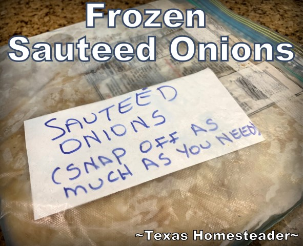 Sauteed onions in a repurposed zippered bag for the freezer. Saute & freeze onions for your own convenience food right in your own freezer. I scored them to make it easier to break off pieces. #TexasHomesteader