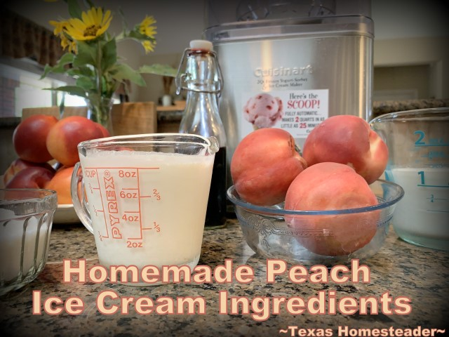 Homemade peach ice cream recipe ingredients. Homemade peach ice cream can go from start to finish in only about 25 minutes. Come see this easier recipe. #TexasHomesteader