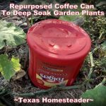 Easy Ways To Repurpose Empty Coffee Cans - Deep-soak watering in the garden. #TexasHomesteader