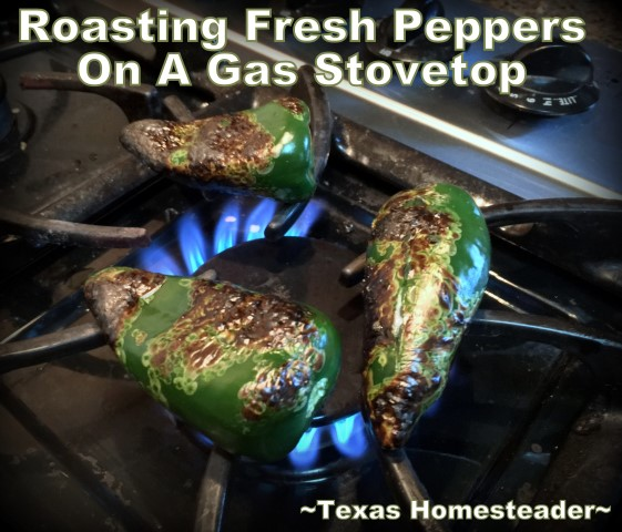 Roasting peppers on a gas stovetop is a great Homestead Hack shortcut. #TexasHomesteader