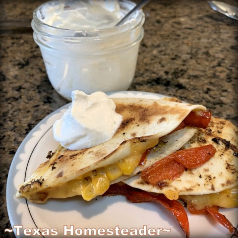 I quickly make a healthier sour cream substitute using unflavored yogurt, lemon juice and a few seasonings. #TexasHomesteader