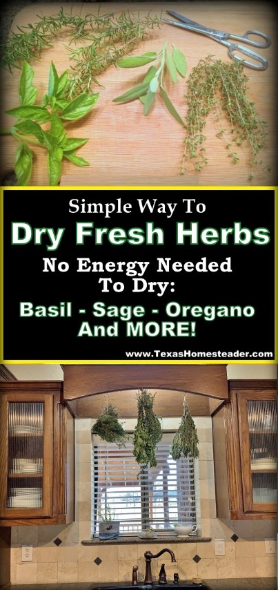 Herb drying doesn't need to take any energy or special appliances. Come see my herb-drying setup. #TexasHomesteader