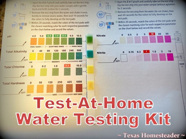 Water testing kit can be performed at home and test for several pollutants. #TexasHomesteader