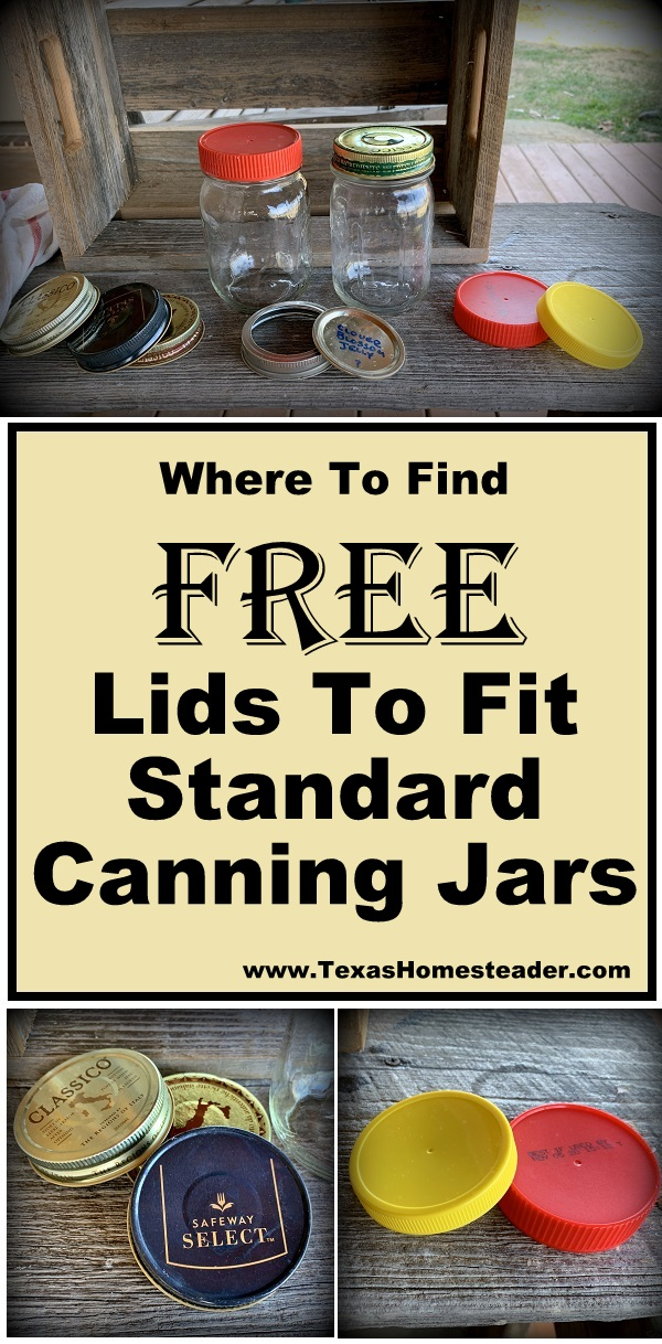 I've found out where to get FREE lids to fit standard canning jars. Come see! #TexasHomesteader