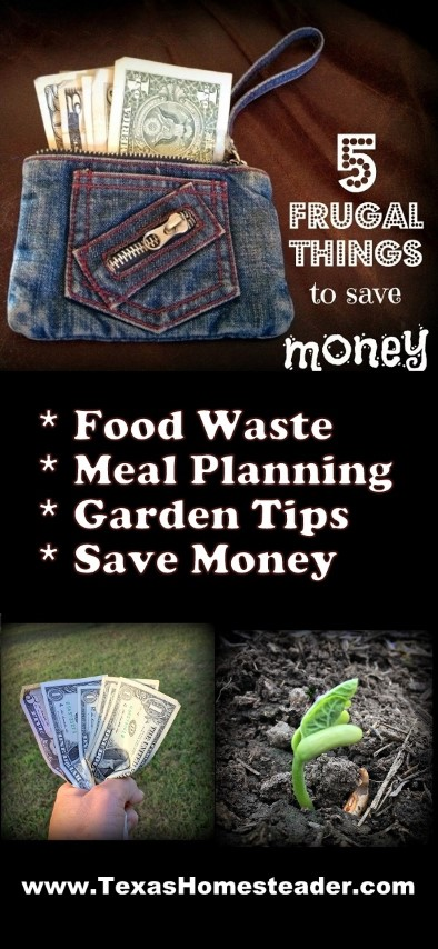 5 Frugal Things we did this week to save money. Food waste, meal planning, garden tips, coupons, decluttering and more! Come see some helpful tips. #TexasHomesteader