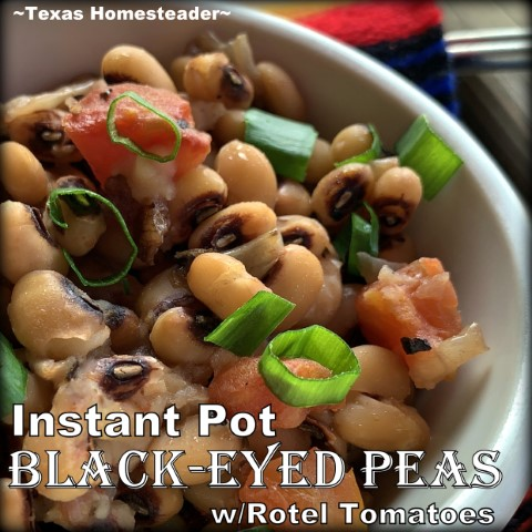 The Instant Pot makes quick work of cooking dry Black-Eyed Peas. And this simple recipe has an added spicy kick from Rotel-style tomatoes. #TexasHomesteader