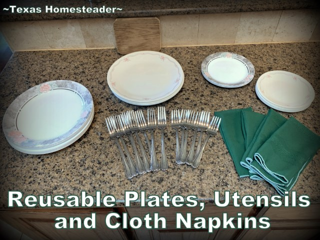 Low-waste party ideas - real reusable plates, flatware and cloth napkins. #TexasHomesteader