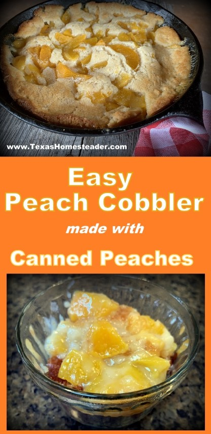 Peach cobbler made with fresh or canned peaches baked in cast iron skillet. #TexasHomesteader