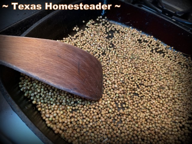 Coriander seeds being lightly roasted in dry cast iron skillet. #TexasHomesteader