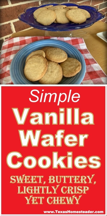 This vanilla wafer cookie recipe is simple and the cookies bake up fast. They're lightly crisp and slightly chewy, and very buttery! #TexasHomesteader