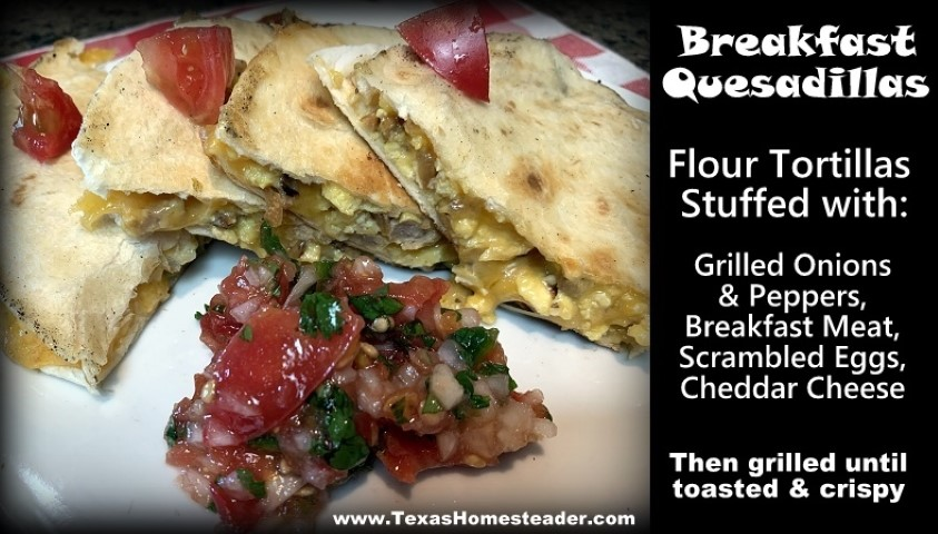 Breakfast quesadillas are made with flour tortillas stuffed with grilled onions & peppers, breakfast meat, scrambled eggs and cheddar cheese. #TexasHomesteader