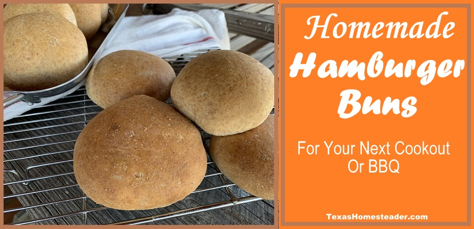 Homemade Hamburger buns are simple to make. And who doesn't love homemade bread??! #TexasHomesteader