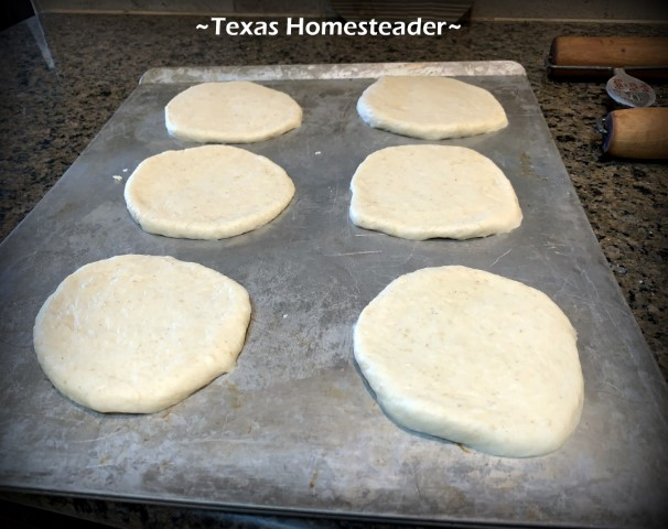 Hamburger bun dough pressed into buns and placed on greased cookie sheet. #TexasHomesteader